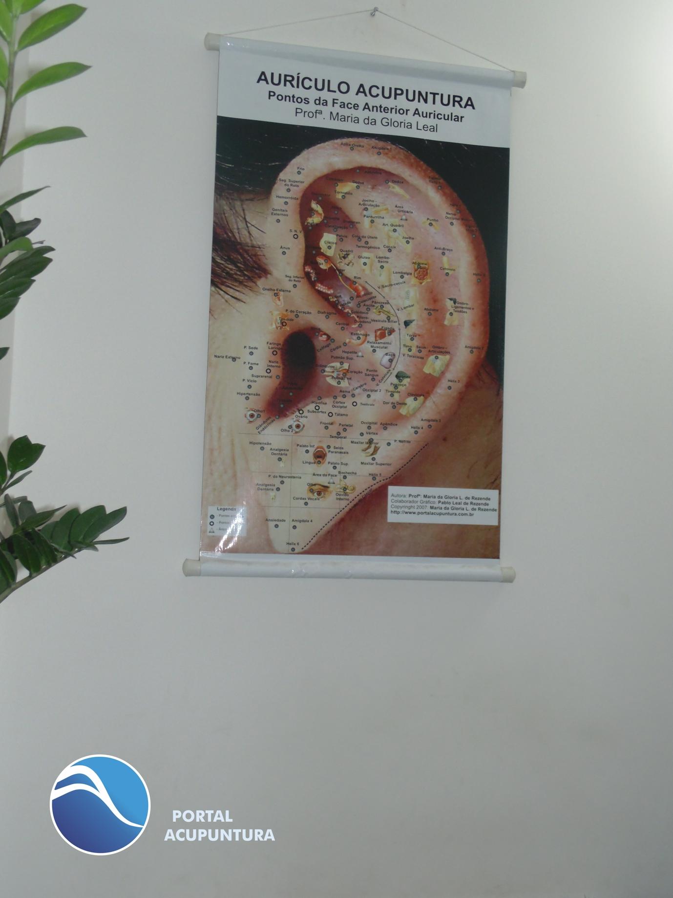GANHE UM MAPA DE PONTOS DE AURICULOACUPUNTURA